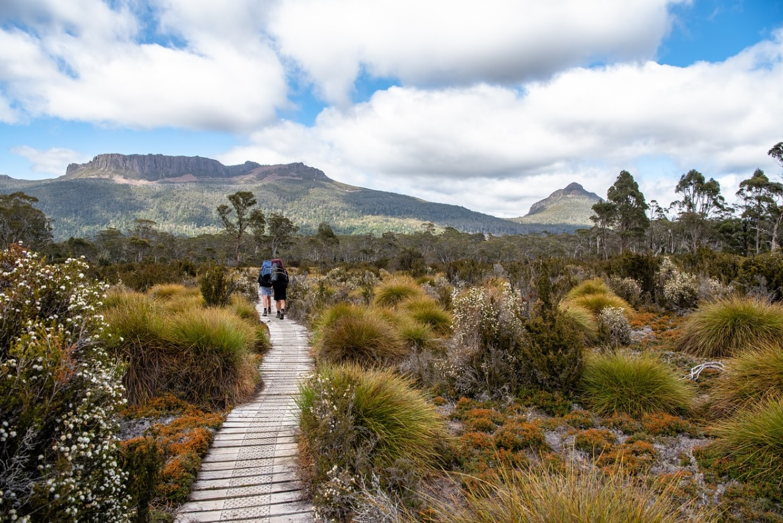 Couple walking through overland track in Tasmania